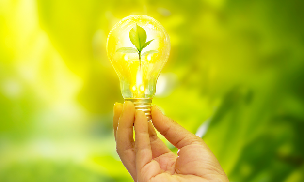DSM: o desafio global da energia limpa