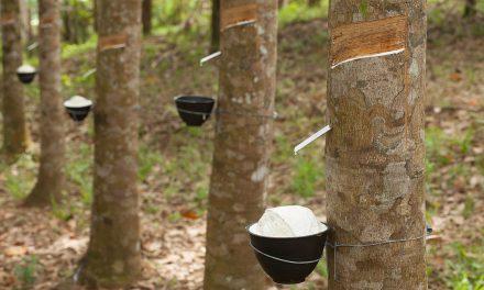 Projeto recicla 100% dos resíduos de borracha de seus processos de manufatura